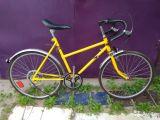 Экспонат, почти велосипед, ВЕМА Салют