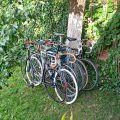 Сколько велосипедов Вам нужно для покрытия всех потребностей?